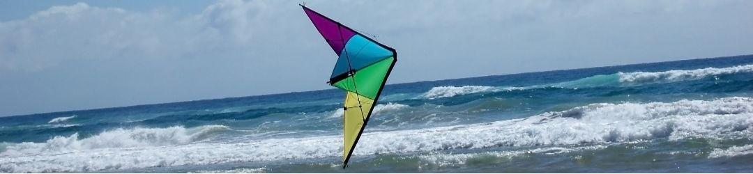 2-line stunt kites